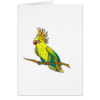 Pippin Parrot Greeting Card