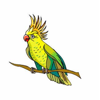 Pippin Parrot Photo Sculptures