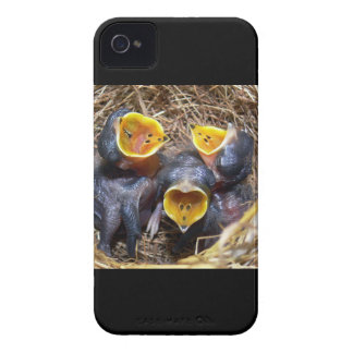 Pippit-closer and Australasian Pipit Case-Mate iPhone 4 Case