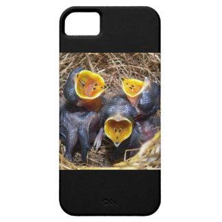 Pippit-closer and Australasian Pipit iPhone SE/5/5s Case