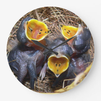 Pippit-closer and Australasian Pipit Large Clock