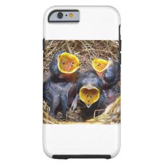 Pippit-closer and Australasian Pipit Tough iPhone 6 Case