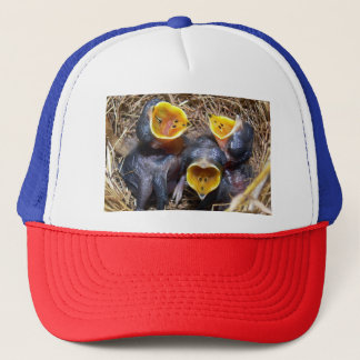 Pippit-closer and Australasian Pipit Trucker Hat