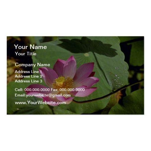 Pique las flores de una flor de Lotus Tarjetas De Visita