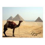 pirámide del camello postal