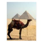 pirámides del camello postal