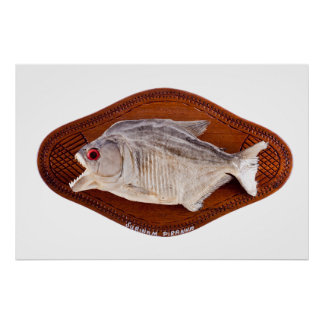 Piranha fish as trophy on wood isolated poster