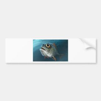 PIRANHA FISH. BUMPER STICKER