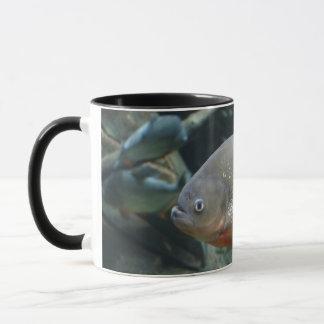 Piranha fish swimming color photograph mug