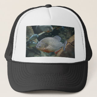 Piranha fish swimming color photograph trucker hat