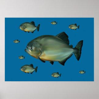 Piranhas Poster
