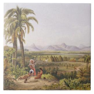 Pirara y lago Amucu, el sitio del EL Dorado, de Tejas Cerámicas