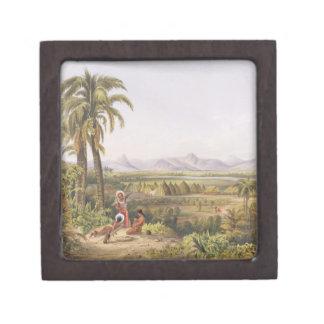 Pirara y lago Amucu, el sitio del EL Dorado, de Caja De Recuerdo De Calidad