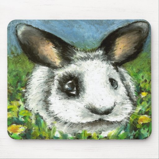 Pirate bunny mouse pads