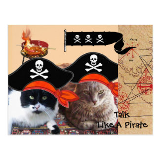 PIRATE CATS ANTIQUE PIRATES TREASURE MAPS AND FLAG POSTCARD
