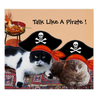 PIRATE CATS ,Talk like a Pirate Day Bbq Party Poster