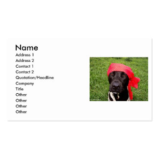 Pirate dog, black lab, red hankerchief green grass Double-Sided standard business cards (Pack of 100)