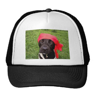 Pirate dog, black lab, red hankerchief green grass mesh hats