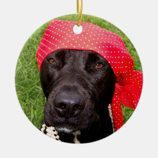 Pirate dog, black lab, red hankerchief green grass christmas ornaments