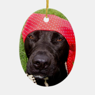 Pirate dog, black lab, red hankerchief green grass christmas ornament