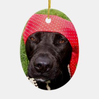 Pirate dog, black lab, red hankerchief green grass christmas ornament