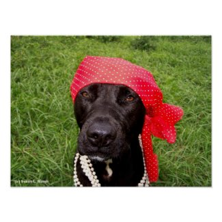 Pirate dog, black lab, red hankerchief green grass print