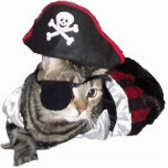 Pirate kitty cat shaped magnet/ornament/keychain cut out