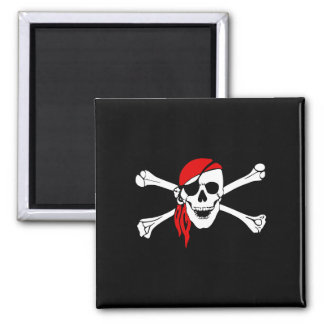 Pirate_Magnet2(S) Magnet