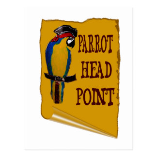 Pirate Parrot Head Postcard
