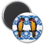 Pirate Parrots Fridge Magnet