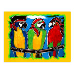 PIRATE PARROTS POST CARDS