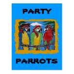 Pirate Party  Parrots Post Card
