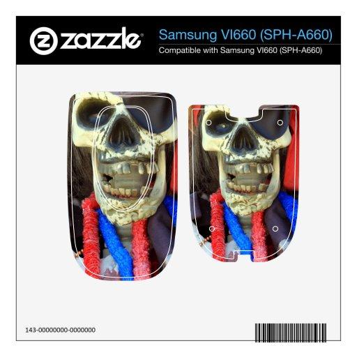 Pirate Samsung VI660 Skins
