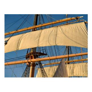 Pirate Ship Mast Postcard