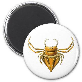 Pirate Spiders Refrigerator Magnet