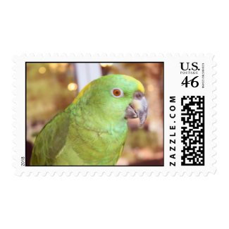 Pirate, the True Parrot stamp