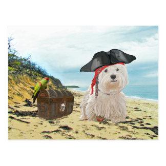 Pirate Westie Postcard