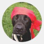 Piratee el perro, laboratorio negro, hierba verde etiqueta redonda