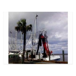 Pirates Ahoy Postcard