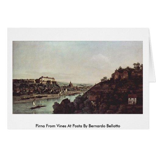 Pirna de vides en Posta de Bernardo Bellotto Tarjeta