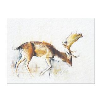 Pisanello Buck 2006 Canvas Print