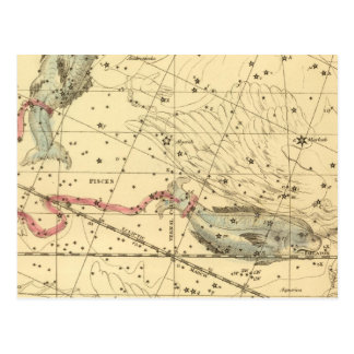 Pisces Post Card
