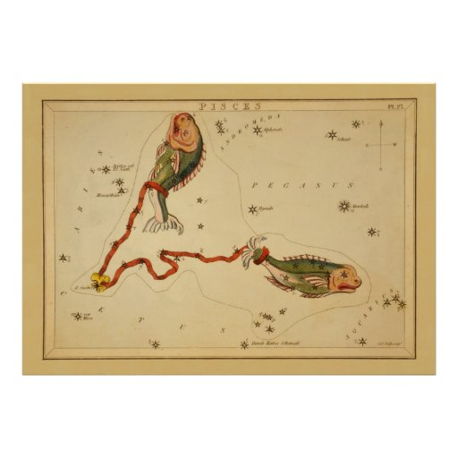 Pisces The Fish - Vintage Sign of the Zodiac Image Poster