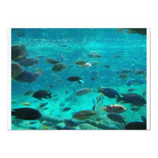 """Piscina azul de los cichlids que nadan alrededor invitación 5"""" x 7"""""""
