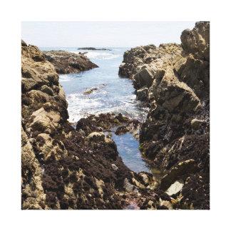 Piscina de la marea lona envuelta para galerías