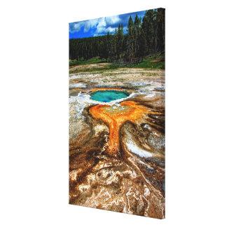 Piscina la termal de Yellowstone Lona Estirada Galerias