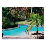 Piscina tropical posters
