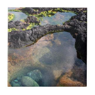 Piscinas de marea azulejo cuadrado pequeño