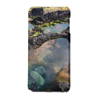 Piscinas de marea carcasa para iPod touch 5