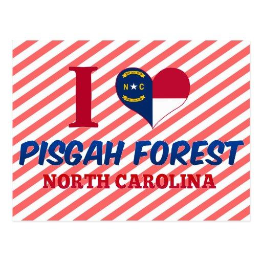 Pisgah Forest, North Carolina Postcard